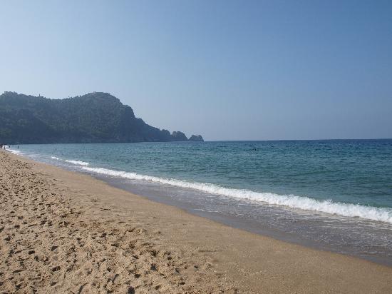 Grand Zaman Beach Hotel: hotel beach
