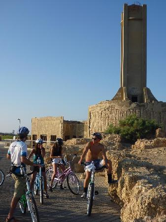 BIke Tel Aviv -Day Tours: EcoBike:Bike Tel Aviv