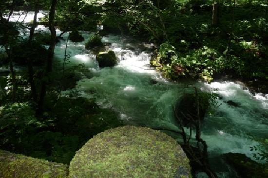 青森県, 夏でも涼しいです