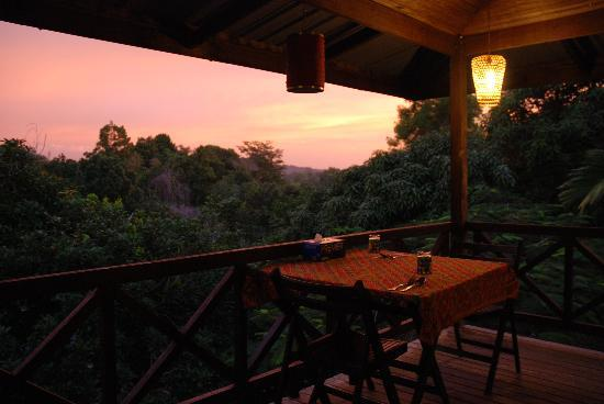 Treetops Lodge: Dinner with a view