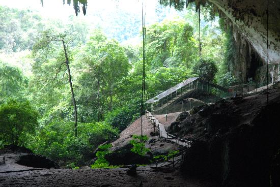 Treetops Lodge: Niah caves around the corner, Treetops provides taxi & lunch