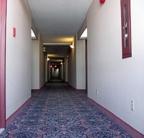 Welcominns : Corridor nest to our room