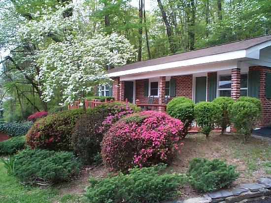 Mountain Aire Cottages & Motel: The Blue Ridge Cottage