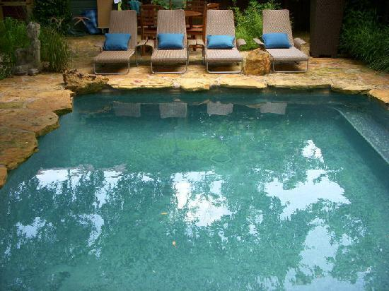 Park Lane Guest House: Our natural stone pool surrounded by live oak trees.