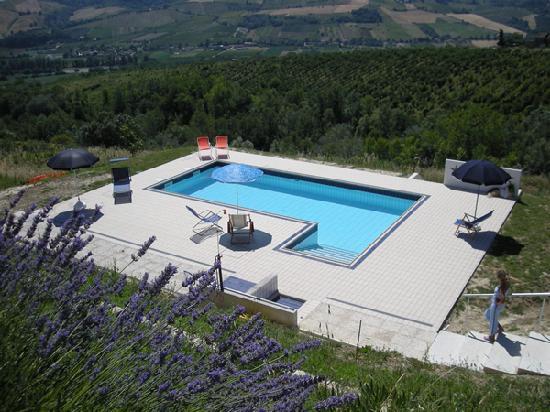 Monte Rinaldo, Italy: Piscina di Villa Elisabeth