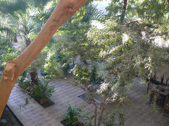 El Nakhil Hotel & Restaurant: Le jardin de l'hôtel