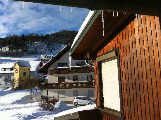 Haus Erika: View from guest room