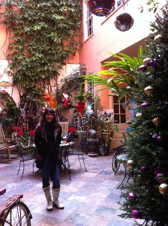 The Saint Philip Hotel: susie in the courtyard