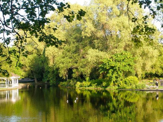St Stephen's Green : Garden Pond