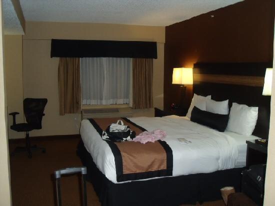 Best Western Plus Newark Airport West Room 306