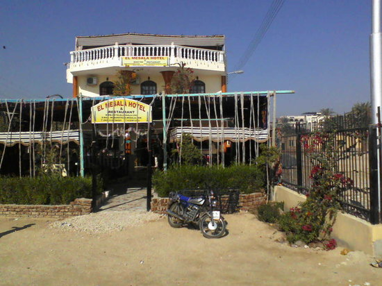 El Mesala Hotel: The front garden with bar and restaurant on patio