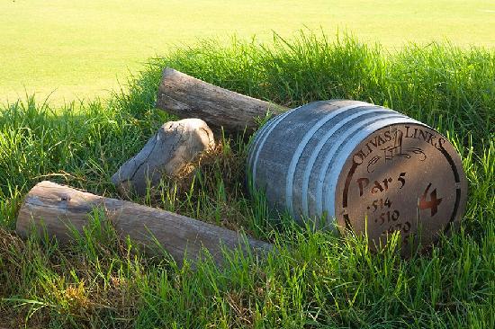 Tee Marker_Olivas Links Golf Course_Ventura