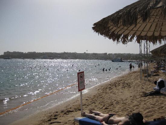Fayrouz Resort Sharm El Sheikh: Section of beach now closed off