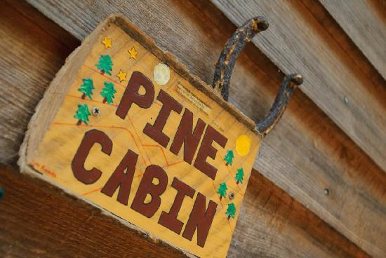 Broadwing Farm Cabins: The Pine Cabin