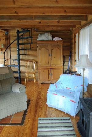 Broadwing Farm Cabins: Staircase to loft and cabinet with tv and dvds.