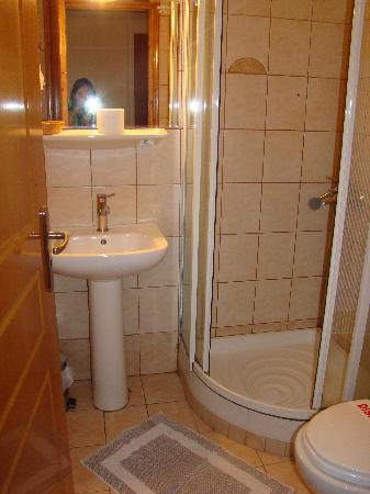 Acropole Hotel : Shower