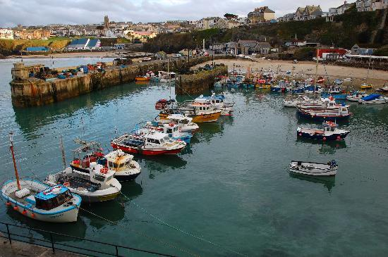 Avondale Guesthouse: Newquay Harbour