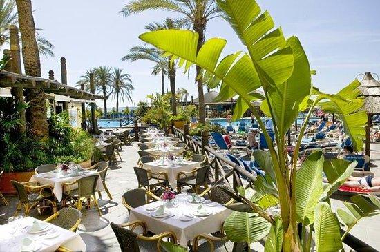 Oasis Restaurante & Terraza