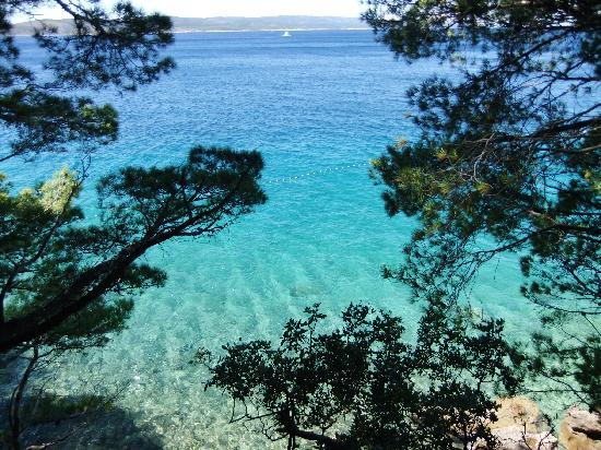 Bluesun Hotel Marina: Clear seas