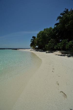 Baros Maldives: Can't wait to get back!