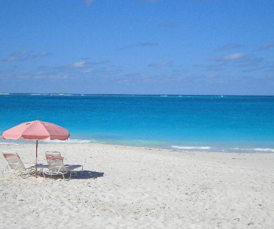 Royal West Indies Resort: beach at Ocean Club resort