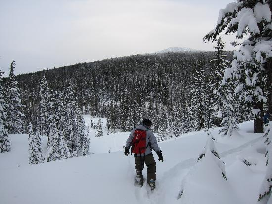 Бенд, Орегон: snowshoeing at Mt Bachelor