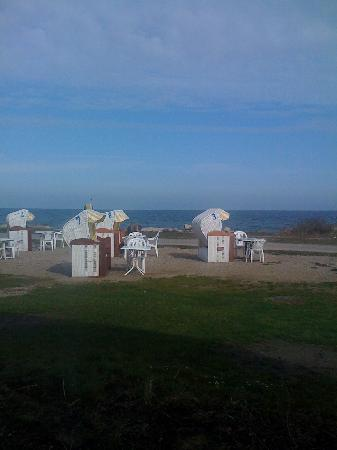 Hohwacht, ألمانيا: Wiese hinter dem Hotel: Strandkörbe für den kleinsten Sonnenstrahl mit Möglichkeit der Verkostun