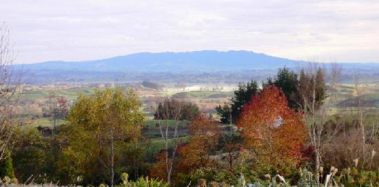 Kamahi Cottage: Views of Mt. pirongia