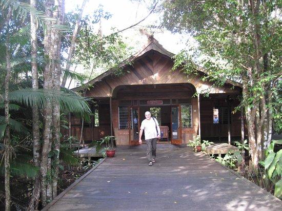 Rimba Orangutan Eco Lodge: Rimba Lodge