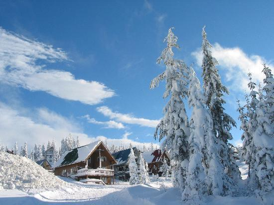 Mount Washington Alpine Resort: Mount Washington Dec 2010