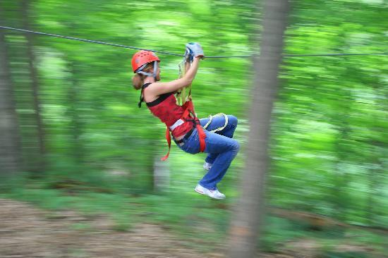 Rockbridge, OH: Zipping at Hocking Hills Canopy Tours