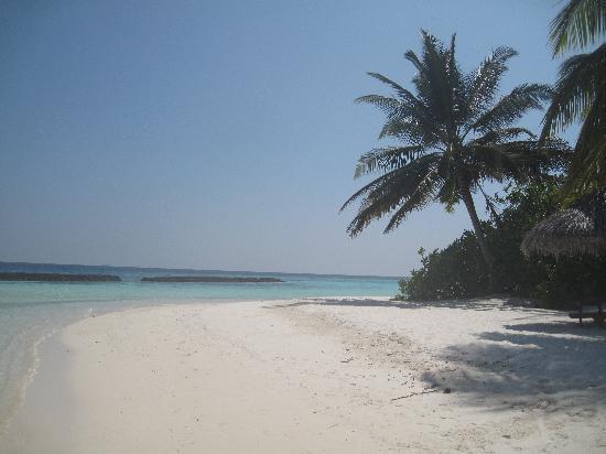 Baros Maldives: Perfect :)