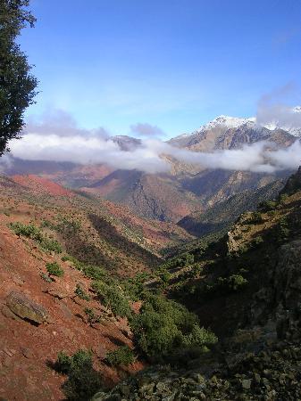 Riad Charlott': atlas marocain