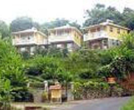 Calibishie Lodges照片