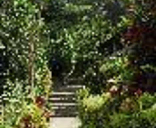 Papillote Wilderness Retreat Thumbnail