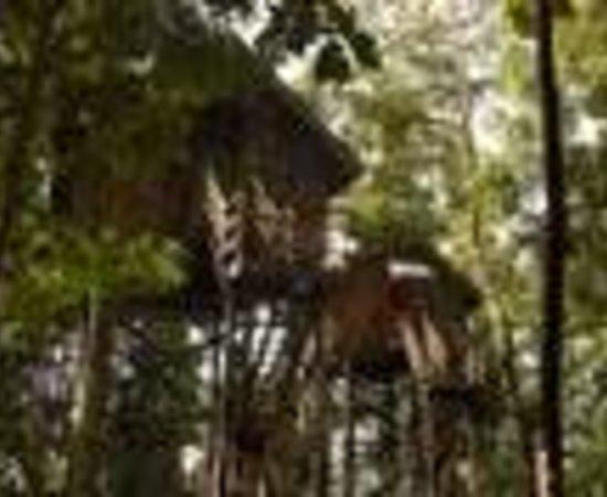 Permai Rainforest Resort Thumbnail