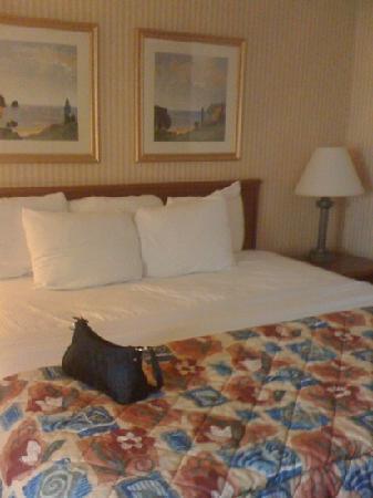 La Quinta Inn Detroit Southgate: comfy bed