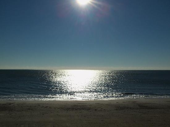 Carolinian Beach Resort Ocean Front View