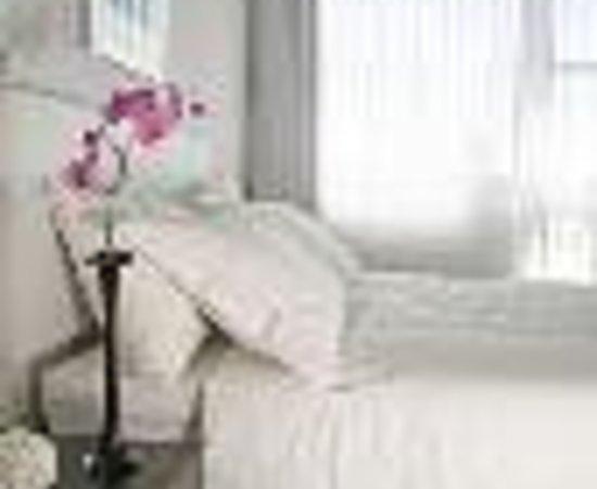 Alexander Tel-Aviv Hotel: Alexander Suites Hotel Thumbnail