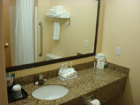 هوليداي إن اكسبرس مورجان تاون: Bathroom
