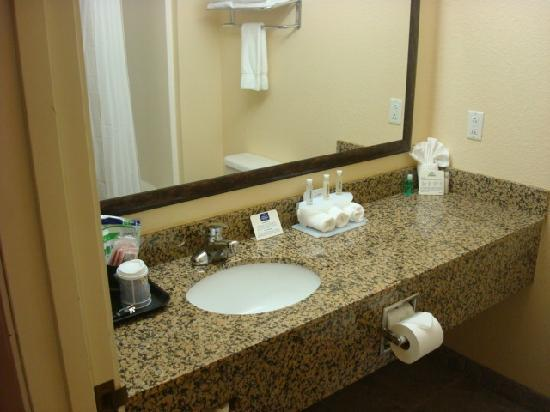 Holiday Inn Express Morgantown: King Standard Bathroom