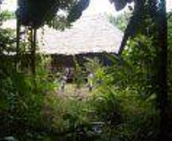 Otorongo Expeditions Jungle Lodge: Otorongo Expeditions Thumbnail