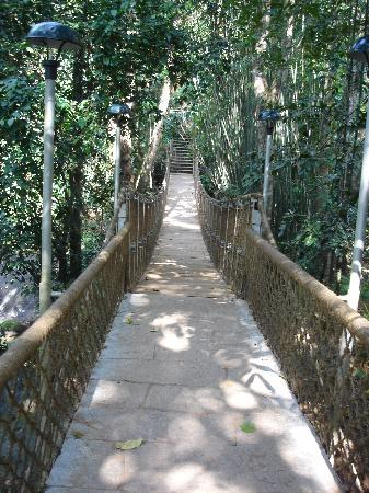 Vythiri Resort: Rope bridge on the stream in the middle of the resort