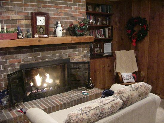 Potterswheel Bed and Breakfast: fireplace and bookcases - I could stay here for hours!