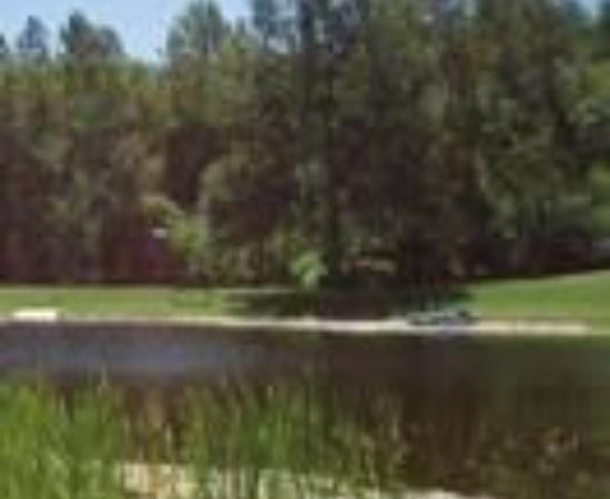 Bare Oaks Family Naturist Park張圖片
