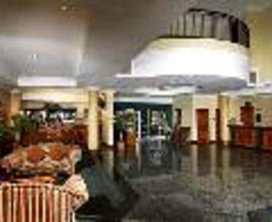 约翰内斯堡机场假日酒店張圖片