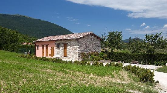 Il Casato: Vacation Homes in peaceful surroundings at  the feet of the Marche Appenneand vineyards ofVerdic