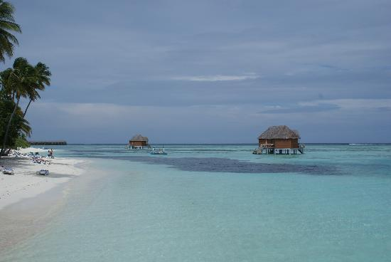 Meeru Island Resort & Spa: vu de la plage
