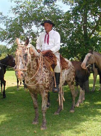 Estancia El Ombu de Areco: Gaucho argentino