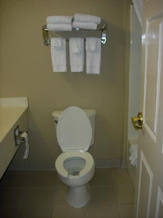 Country Inn & Suites By Carlson, Elyria: Bathroom